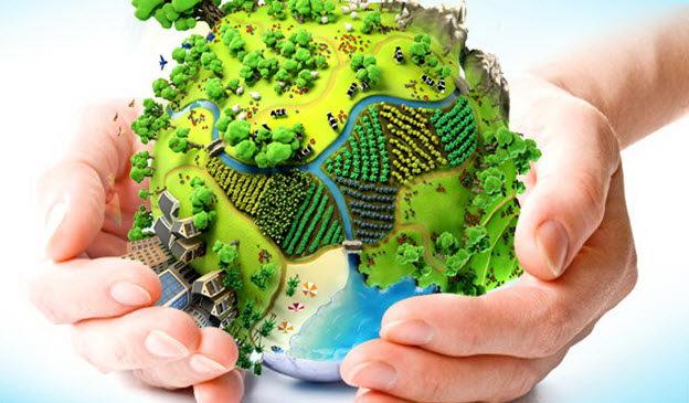 سازمان محیط زیست